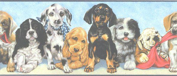 Playful Puppy wallpaper border. Mans best friend