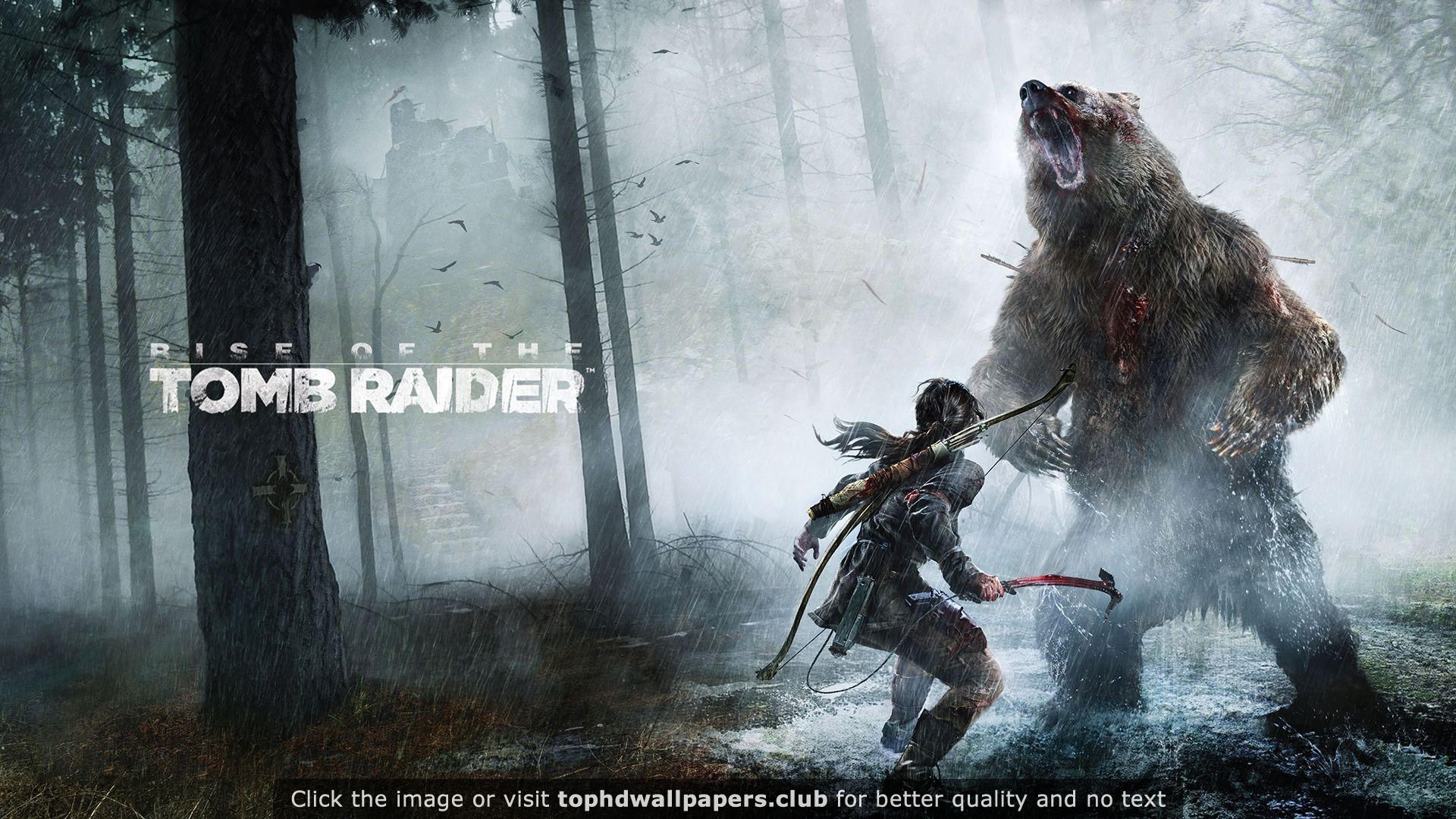 Rise of the Tomb Raider PC Game 4K or HD wallpaper for your PC, Mac or Mobile device