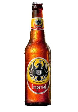 Florida Imperial Birrapedia Beer Beer Guide Beer Design