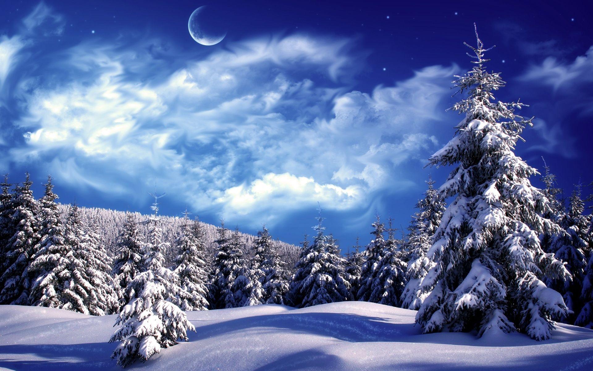 Winter Snow Wallpaper Winter Scenery Winter Landscape