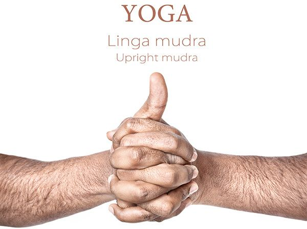 shankh mudra yoga para diabetes