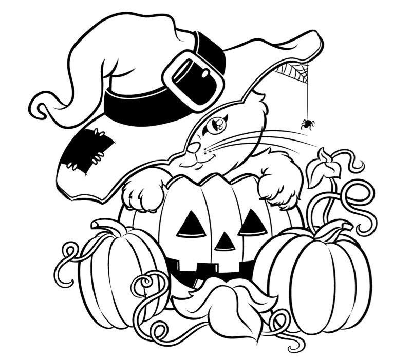 Katze und Krbis zum Ausmalen  ses Bild  Halloween  Pinterest