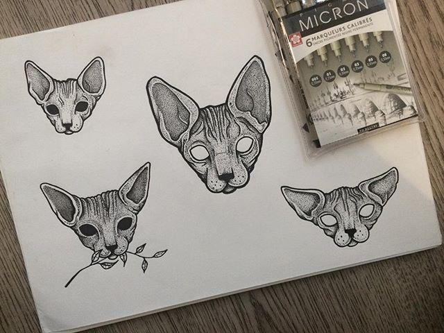 Flash Flashaddicted Cat Sphynx Sphynxtattoo Ink Blackink Dotwork Tattoo Cat Tattoo Kitten Tattoo Sphynx Cat Tattoo