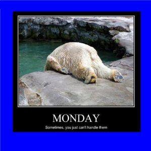 Funny Monday Memes Clean Funny Monday Memes Animal Memes Monday Humor