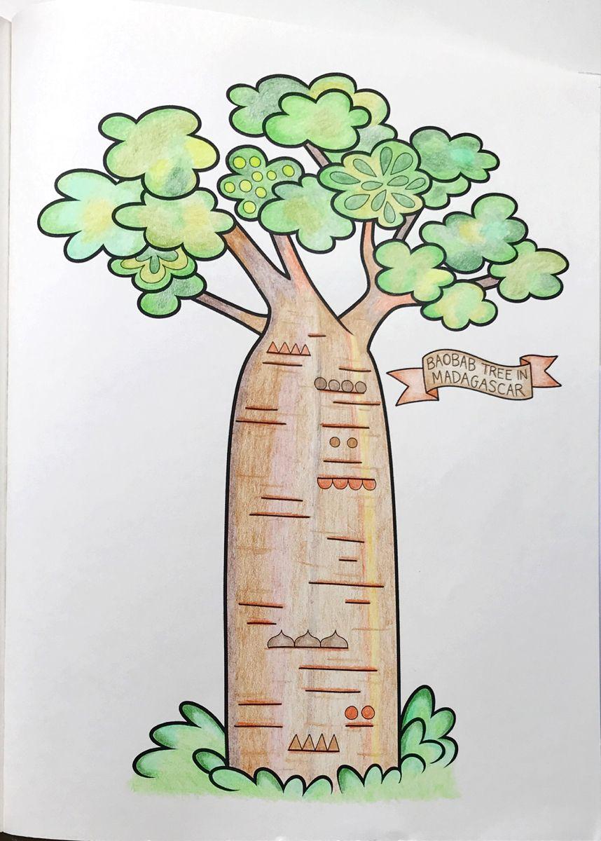 Baobab Tree In Madagascar Kleurplaten
