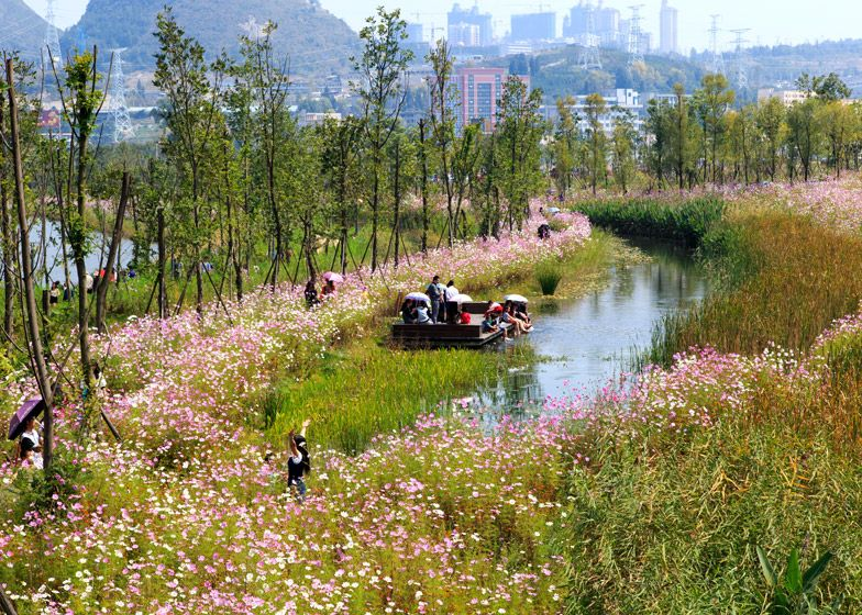Turenscape transforms a ditch into wetland park in china for Wet garden designs