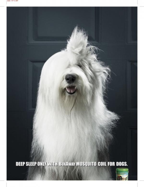 Old English Sheep Dog Print Ad For Buxaway Mosquito Coil For Dogs By English Sheepdog Old English Sheepdog Dog Breeds