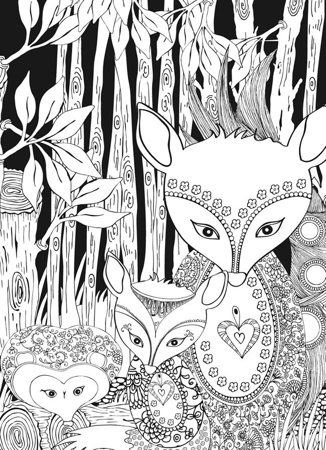 Creative Haven Midnight Forest Coloring Book | Paper Crafs ...