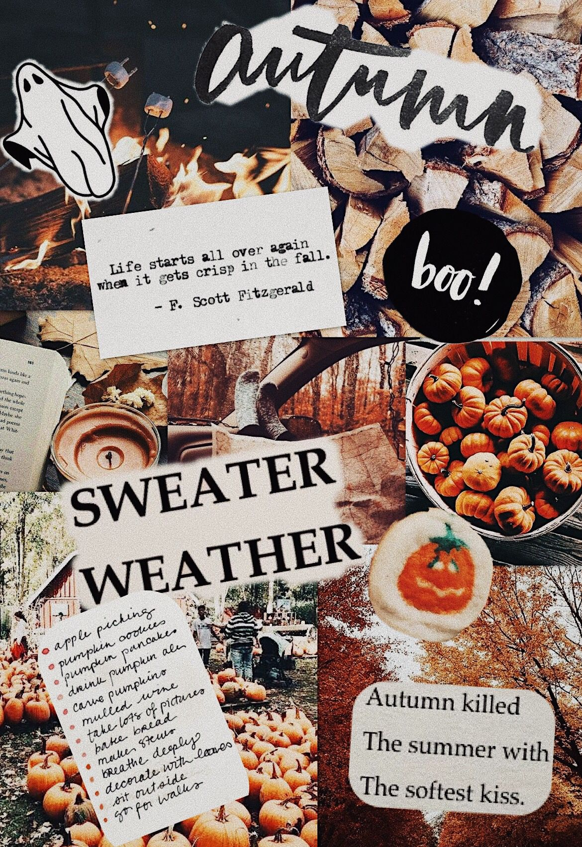 Fall Collage Halloween Wallpaper Iphone Wallpaper Fall Fall Wallpaper