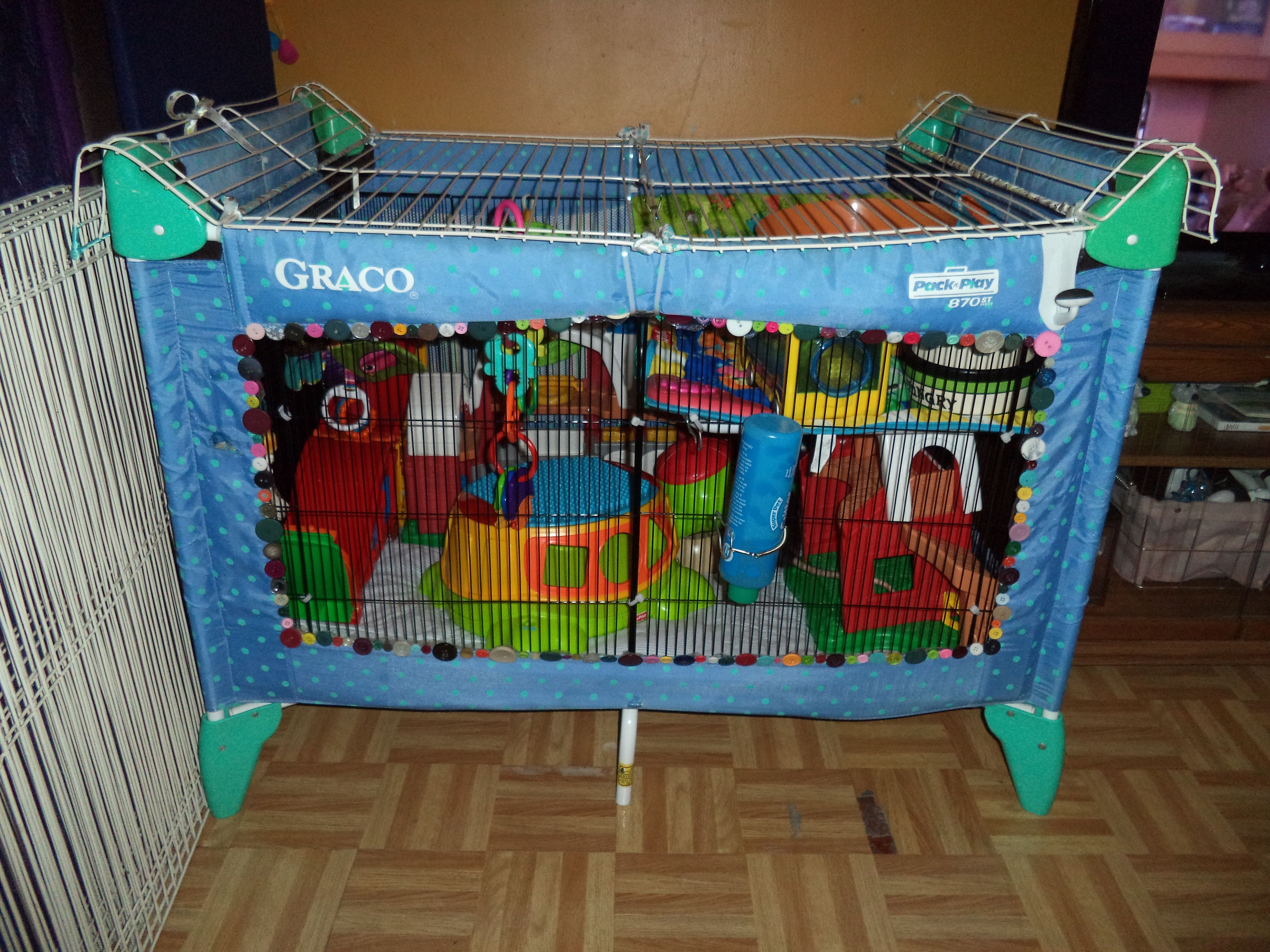 Here's Johnny | Pet rats, Small pets, Diy stuffed animals