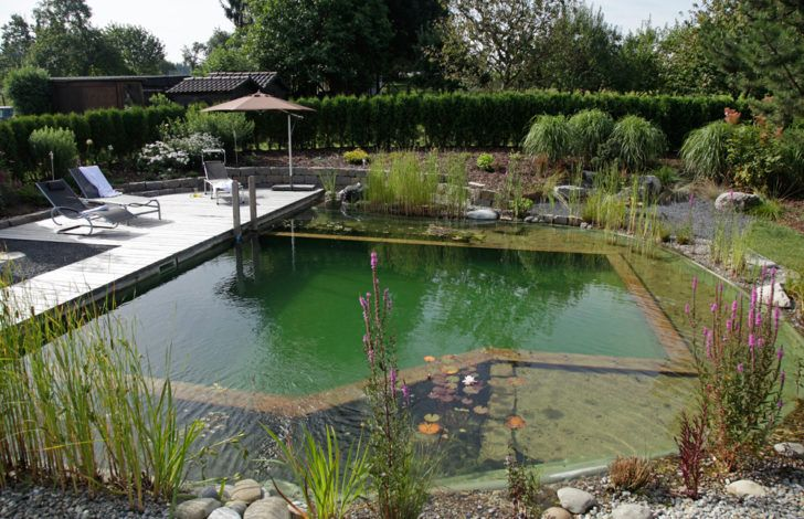 How to Build a Natural Organic Pool Organic, Water treatment and - pool fur garten oval