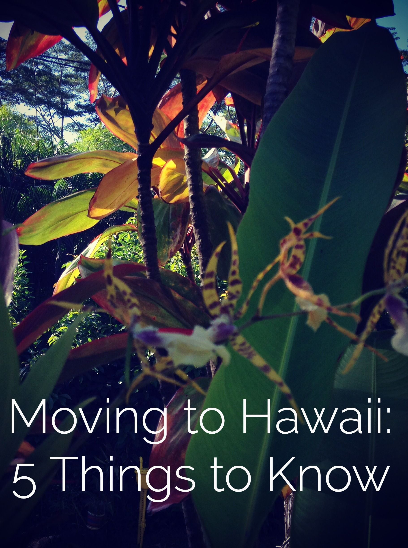 Moving To Hawaii 5 Things To Know Moving To Hawaii Big Island Hawaii Hawaii