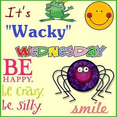 That Wacky Wednesday is here again! | Wacky wednesday, Happy ...