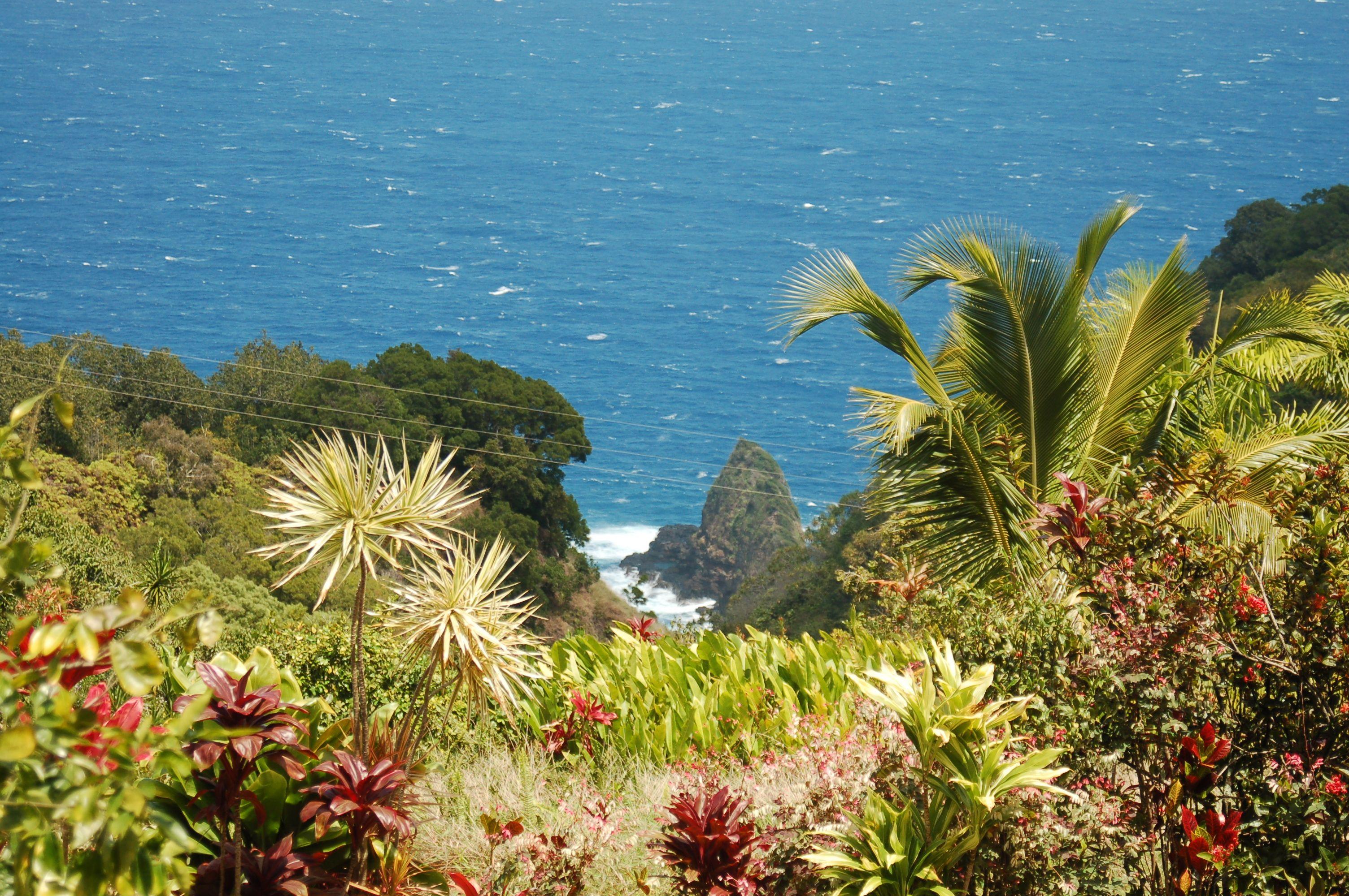 Maui Garden Of Eden Botanical Gardens Maui Site For The