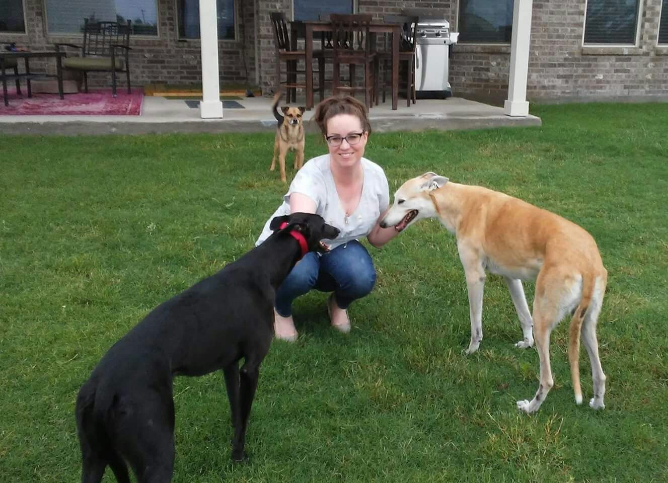 Lena Is Home Forever With A 13 Year Old Greyhound And A 10 Year