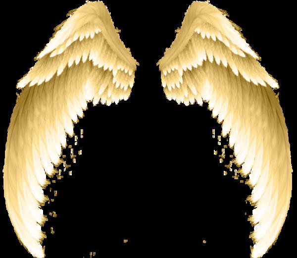 ailes d anges stephen en 2019 ailes d 39 ange ange et tatoo