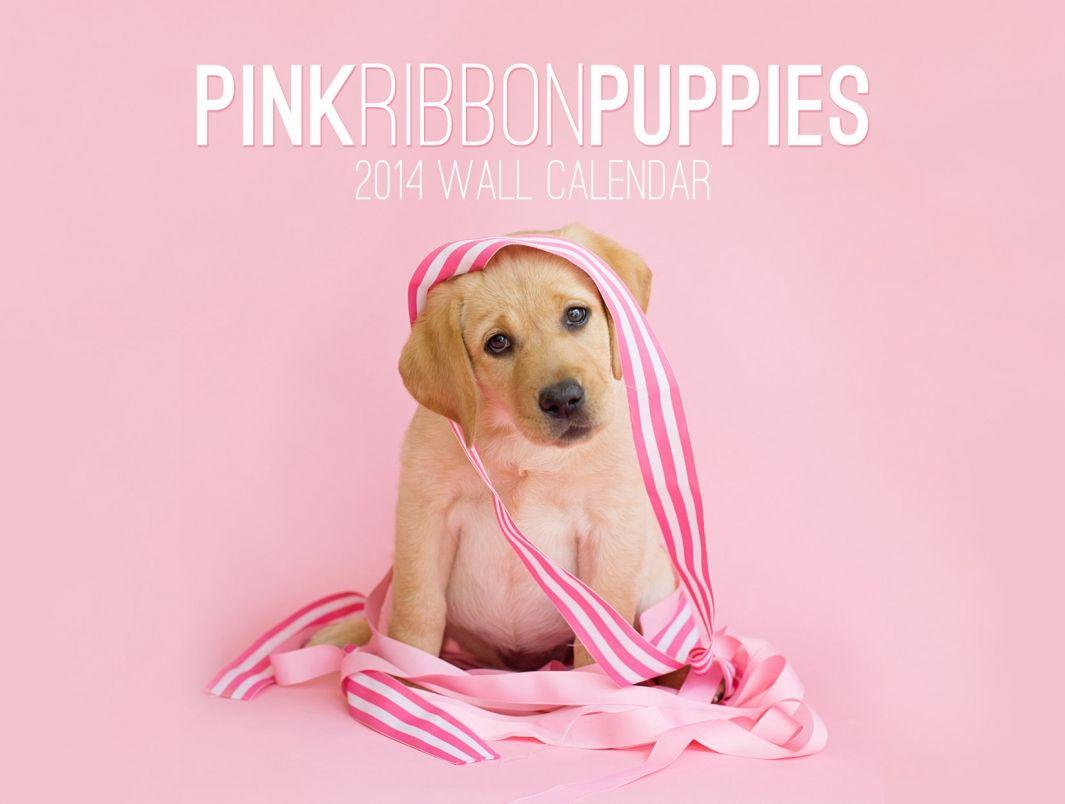 pink ribbon puppies Pink puppy, Puppies, Pink ribbon