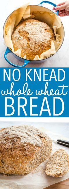 This No Knead Whole Wheat Artisan Bread is the perfect easy whole wheat bread recipe! No overnight rising no kneading - it's the perfect hearty crusty loaf! Recipe from thebusybaker.ca! #wholewheat #bread #homemade #homemadebread #wholegrain #dutchoven #howtomakebread #howtomakehomemadebread #healthybread #health