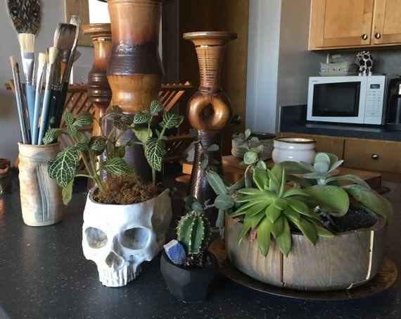Skull Decor Succulent Planter, Boho Decor Gothic Home