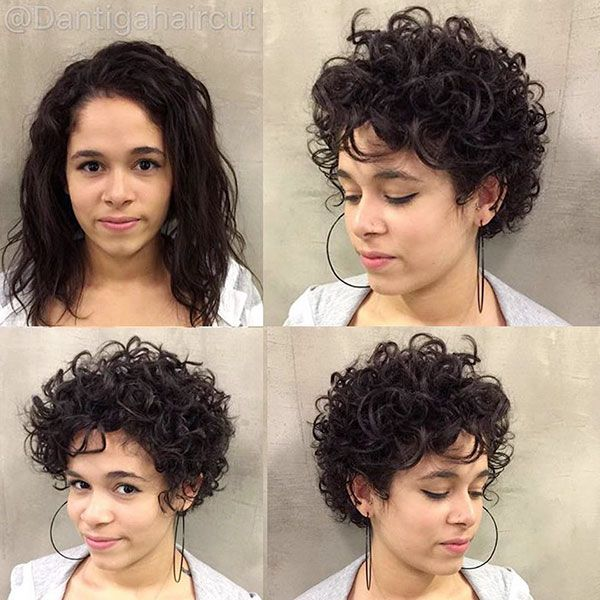 100 Elegant Short Curly Hair Ideas 2019 Fashion 2d Curly Hair Styles Short Curly Hair Short Hair Styles For Round Faces