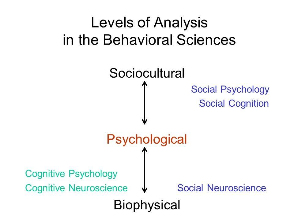 Social Cognitive Neuroscience With Images Cognitive Psychology