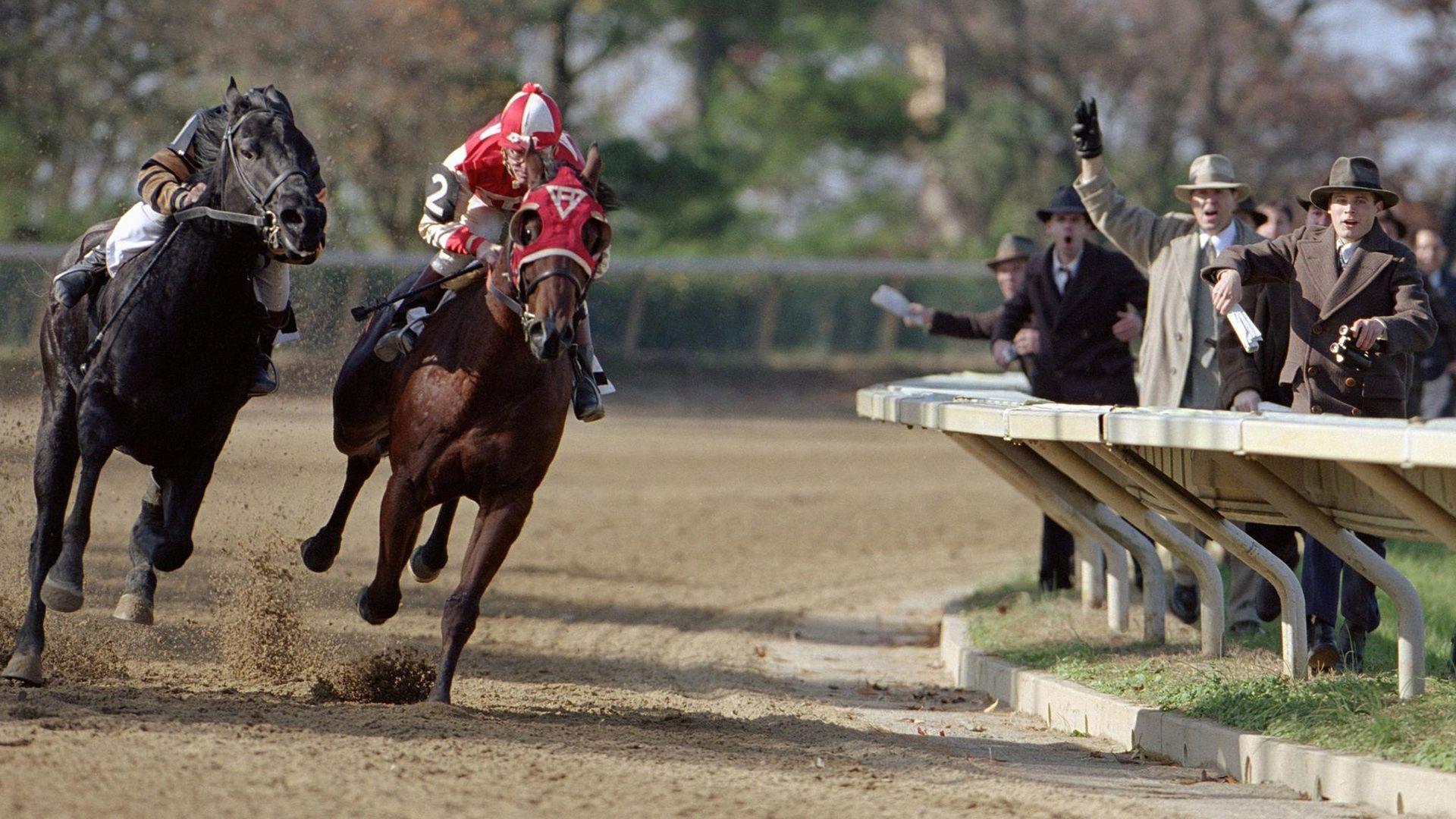 Movie Detail Fanart Tv Fanart Tv Horse Movies Show Horses Horses