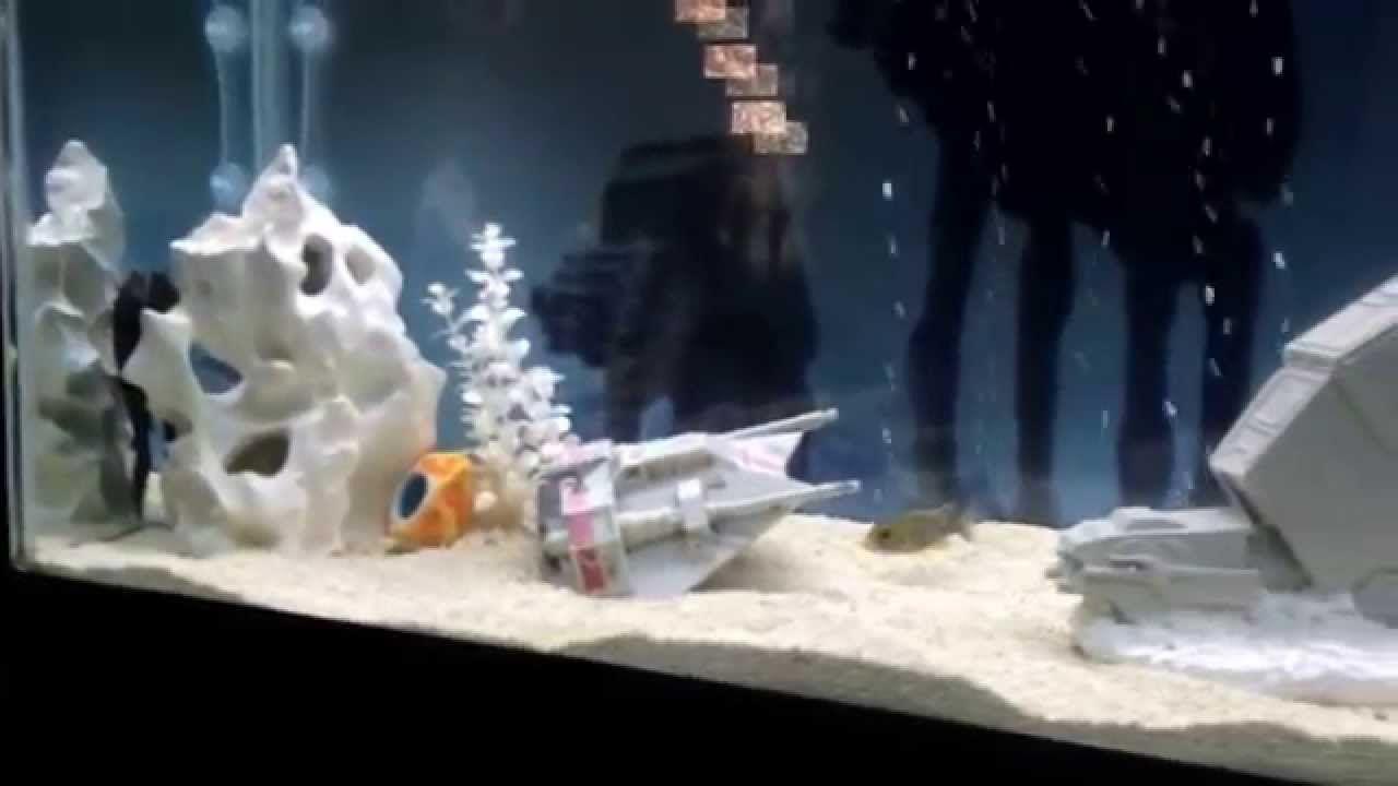 Star Wars Fish Tank Background