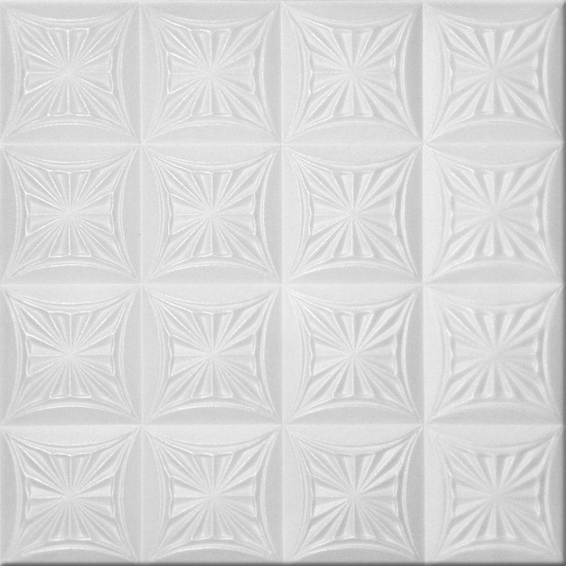 Ceiling · Styrofoam Ceiling Tiles