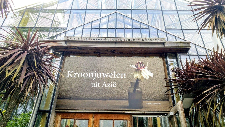 Botanische Tuin Leiden : Kroonjuwelen uit azië hortus botanicus leiden: in 2017 is het