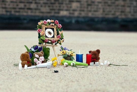 Bug memorial. May those creepy-crawlers rest in peace.