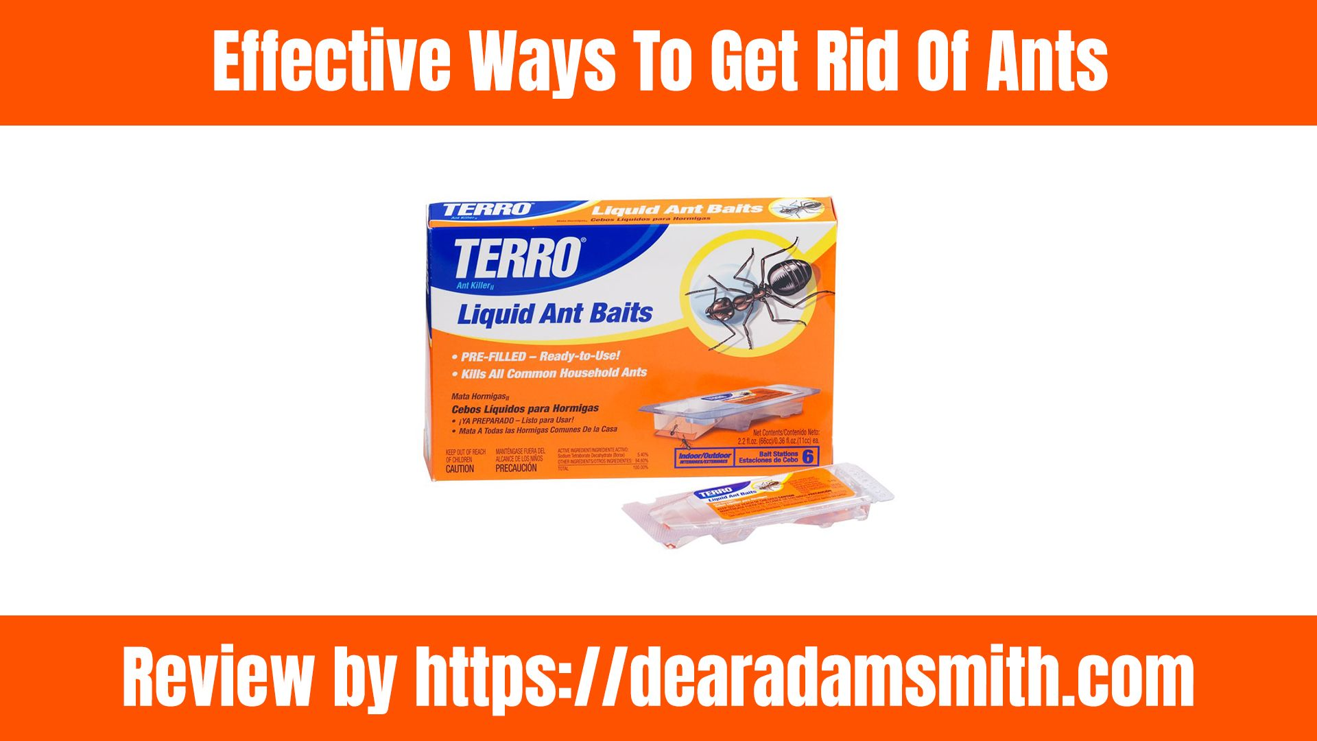 How To Get Rid Of Ants Simple Removal Rid of ants, Get