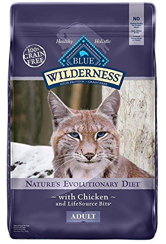 blue buffalo wilderness high protein dry adult cat food amazon most trusted e