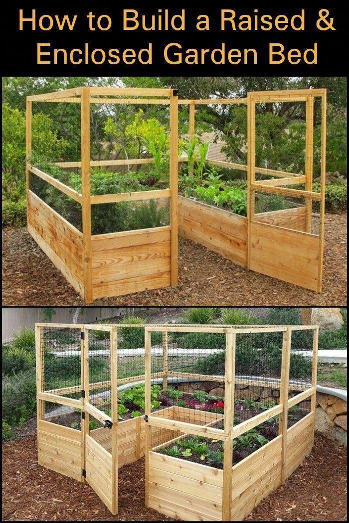 Einfache Bio-Garten-Tipps von den Profis - Garten #ediblegarden