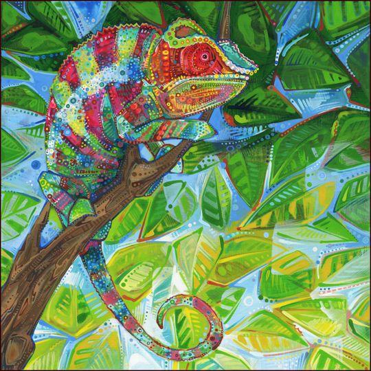 panther chameleon from northeastern Madagascar gwenn seemel