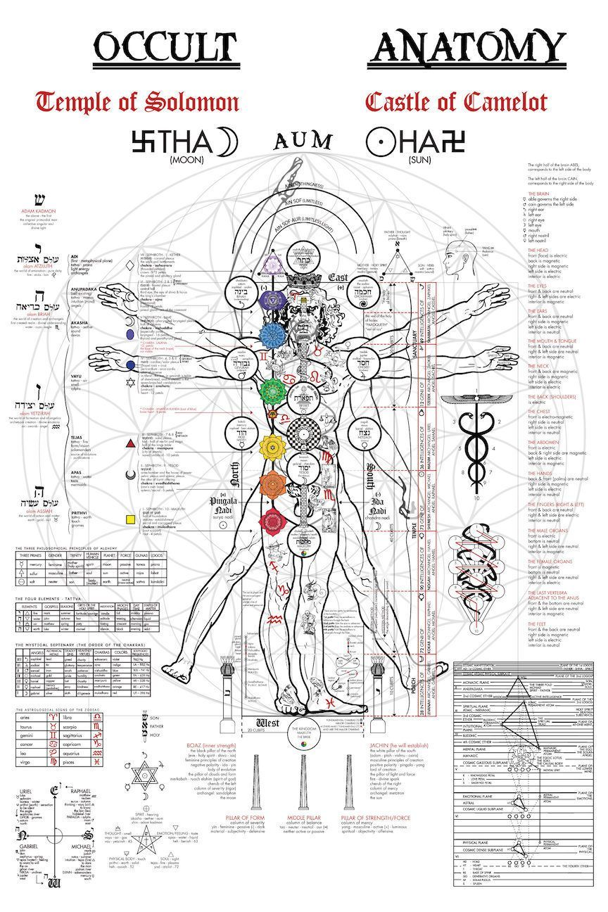 The Occult Anatomy of the human body on the Vitruvian Man ...