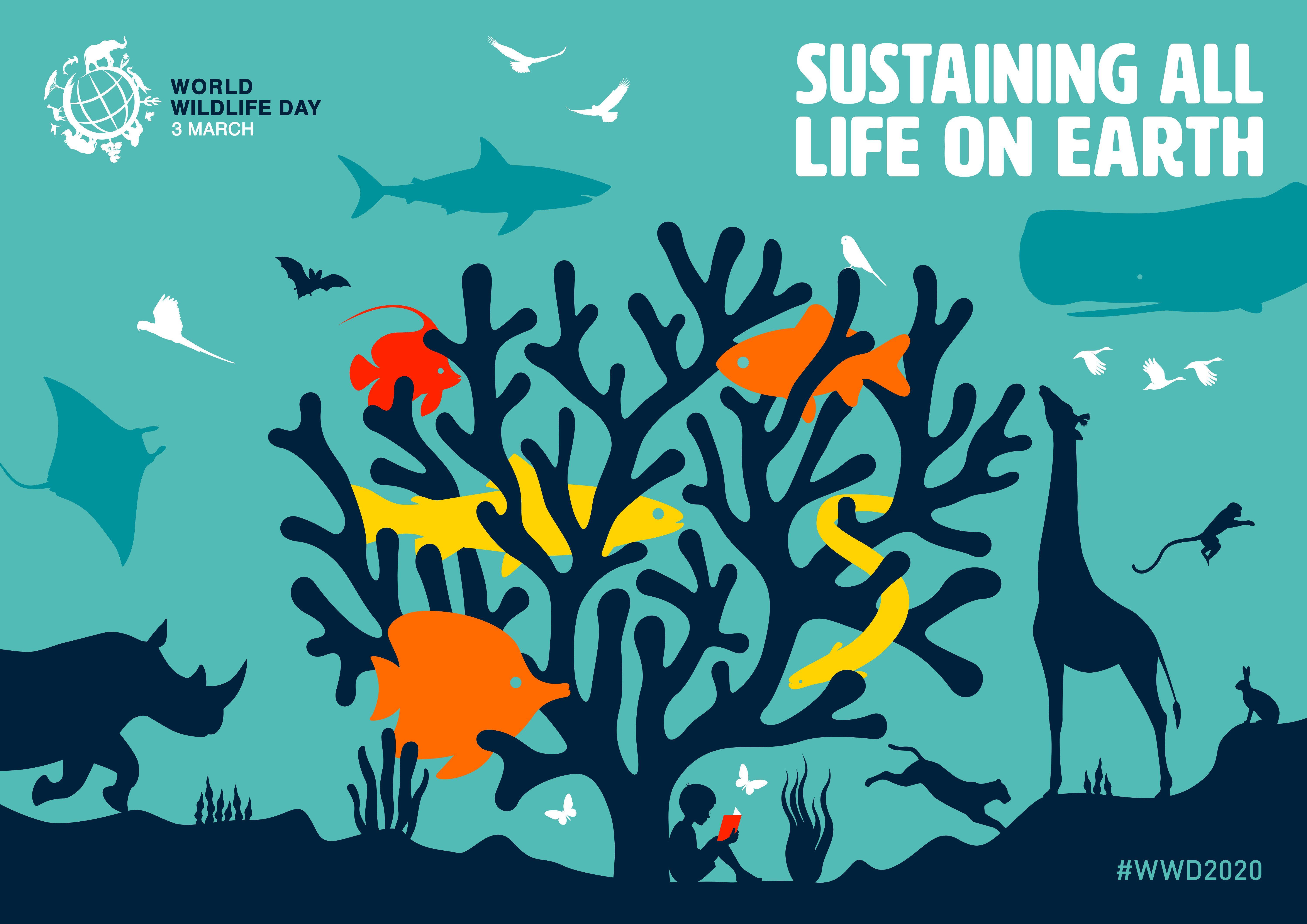 Celebrate The World S Wonderful Biodiversity And Help Protect