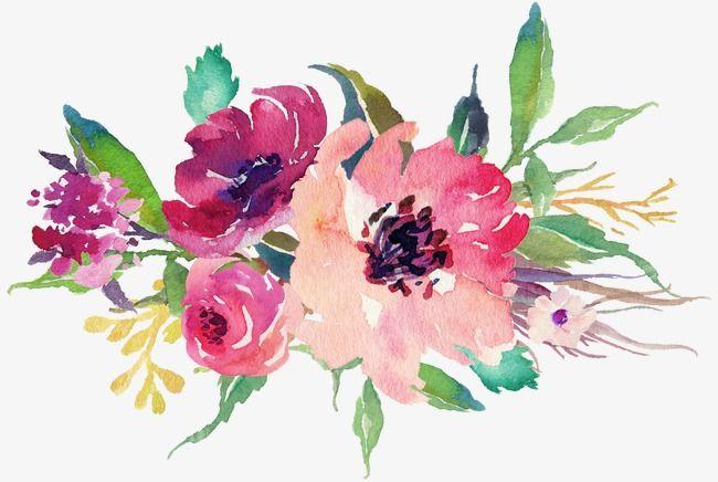 Aquarelle De Fleurs Peint A La Main Bloom Fleur Fichier Png Et