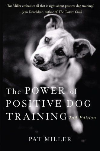The Power Of Positive Dog Training For Owner And Pet Best Dog