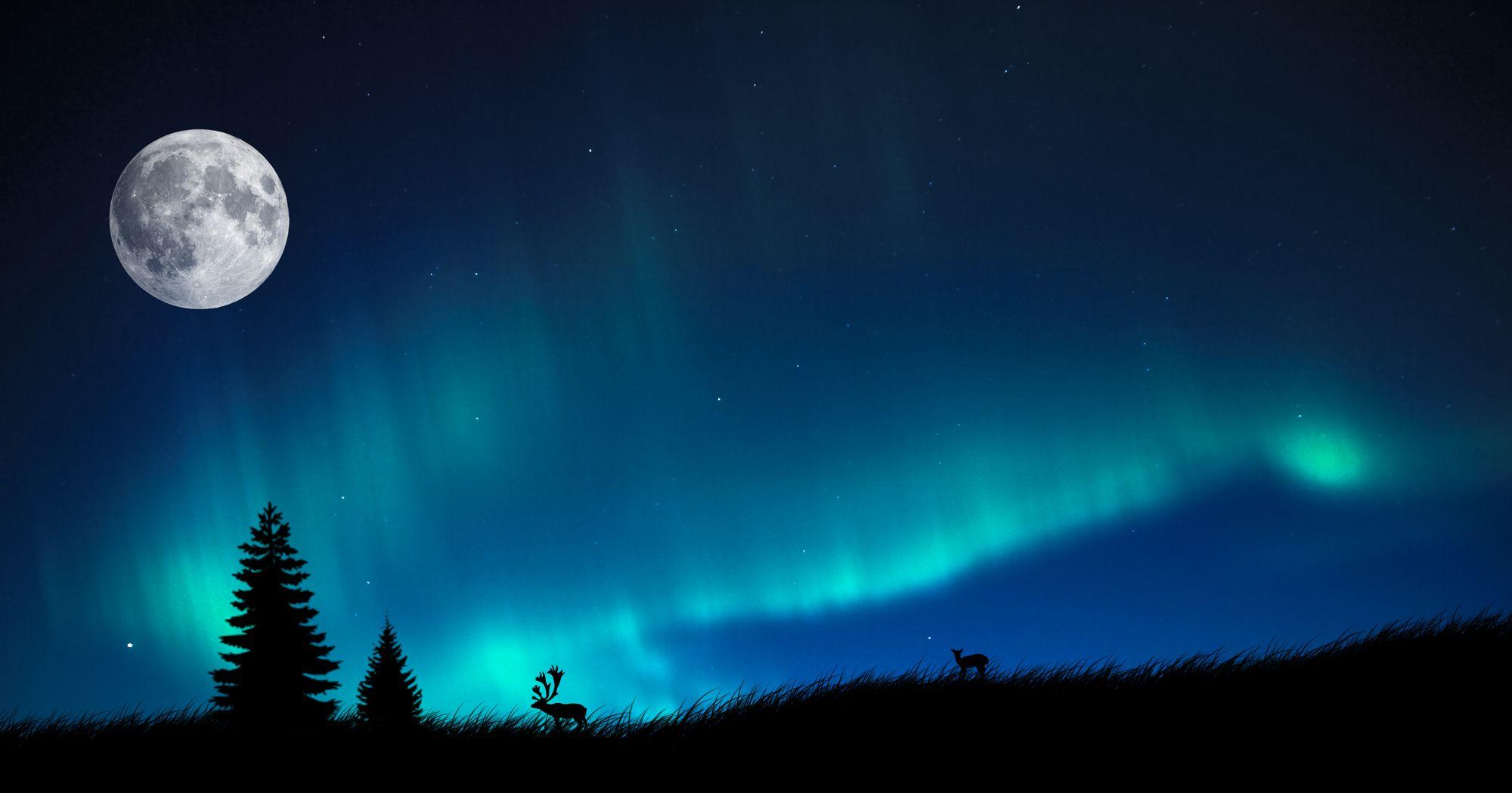 Aurora Borealis Wallpaper 5079 1680x1050 Px Hdwallsource Com Northern Lights Wallpaper Northen Lights Northern Lights