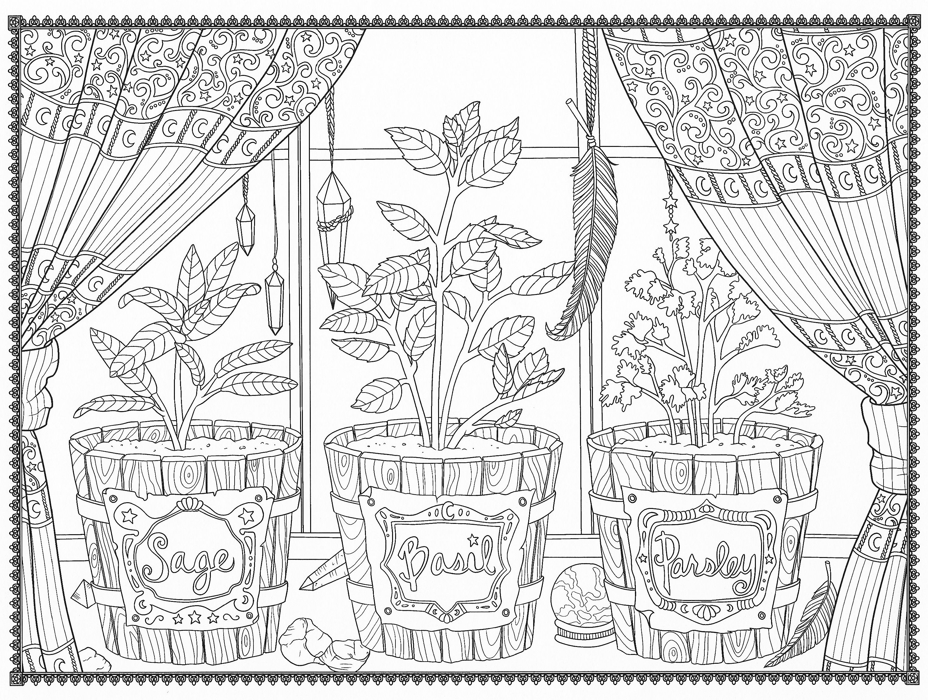 herbs coloring pages - photo#16