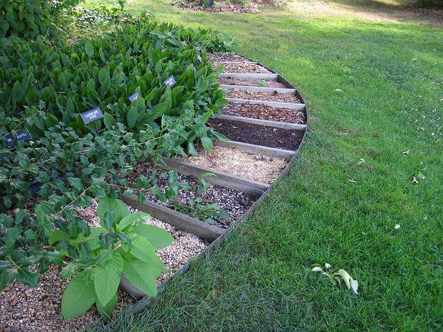 Compost Demonstration Site | Garden compost, Garden ...