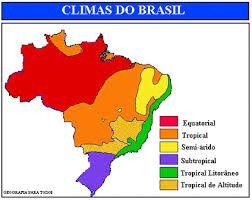Resultado de imagem para dominios morfoclimaticos do brasil
