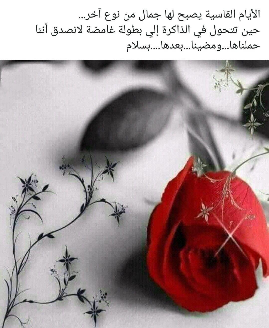 Pin By Najla Al Sudairy On Spirito Perduto Arabic Quotes Beautiful Arabic Words Arabic Love Quotes