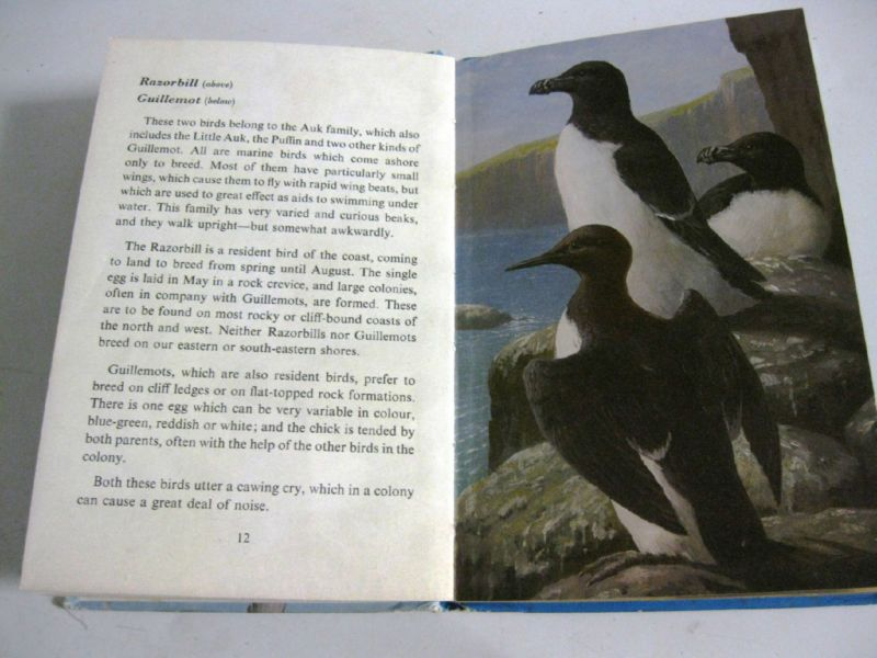 VINTAGE LADYBIRD BOOK -