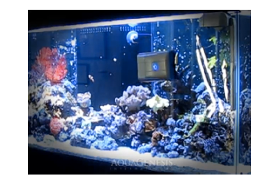 RoboSnail - automated aquarium glass cleaner. I would like to have one of these for the aquaponics aquarium in my future home.