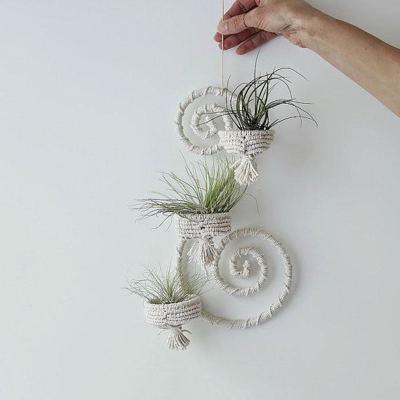 Air plant decor. Macrame wall decor. Mini plant by RetoDecor, $94.00