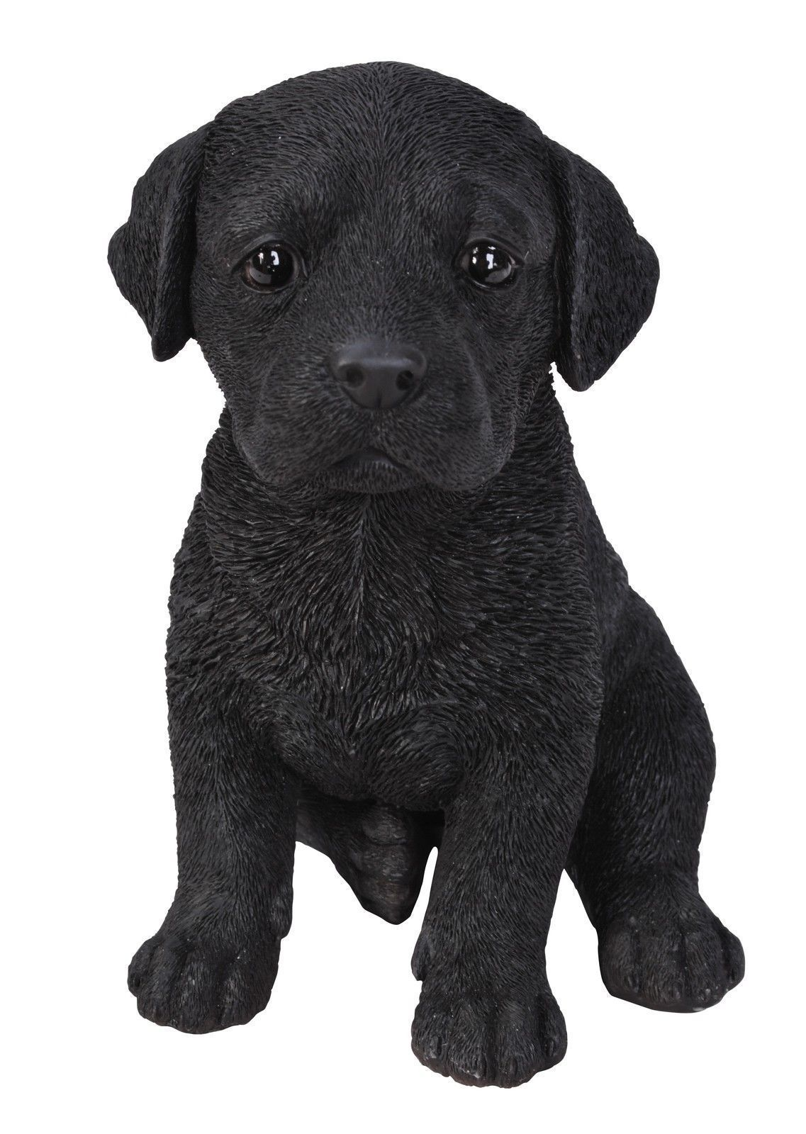 Black Labrador Puppy Pet Pals Vivid Arts Black labrador