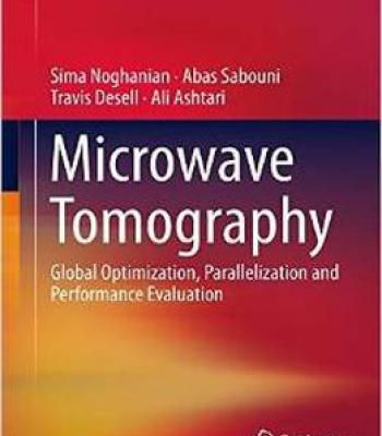Microwave Tomography Global Optimization Parallelization And