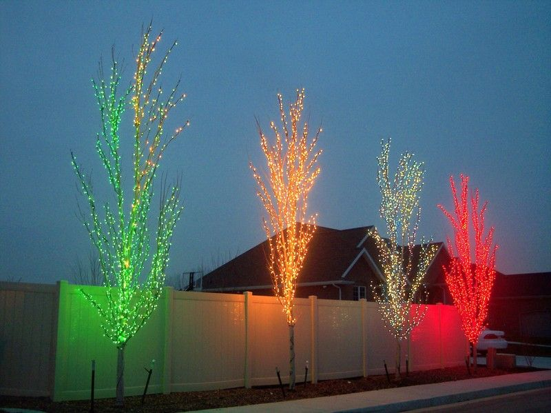 Christmas Light Installation Colorado Call Us 720 221