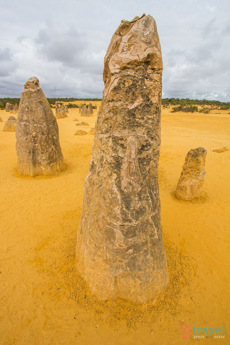 "The ancient limestone formations known as ""The Pinaccles"" in Western Australia."